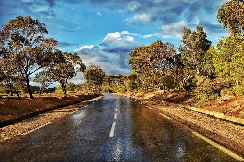de weg van Algerije stock fotografie