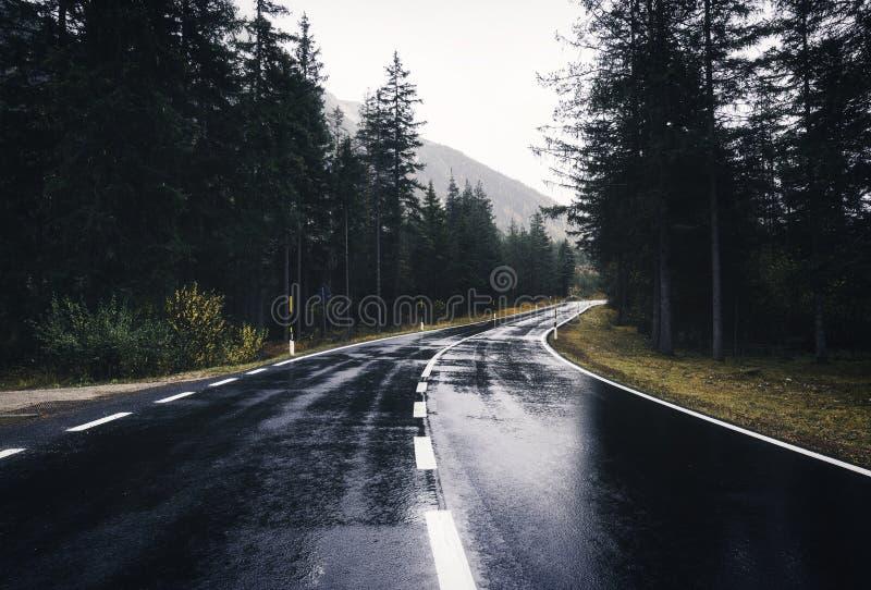 De weg van de asfaltberg in donkere regenachtige dag in de lente stock afbeeldingen