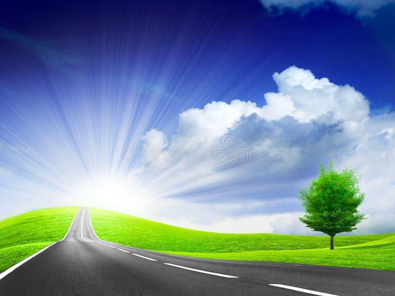De weg van de auto stock illustratie