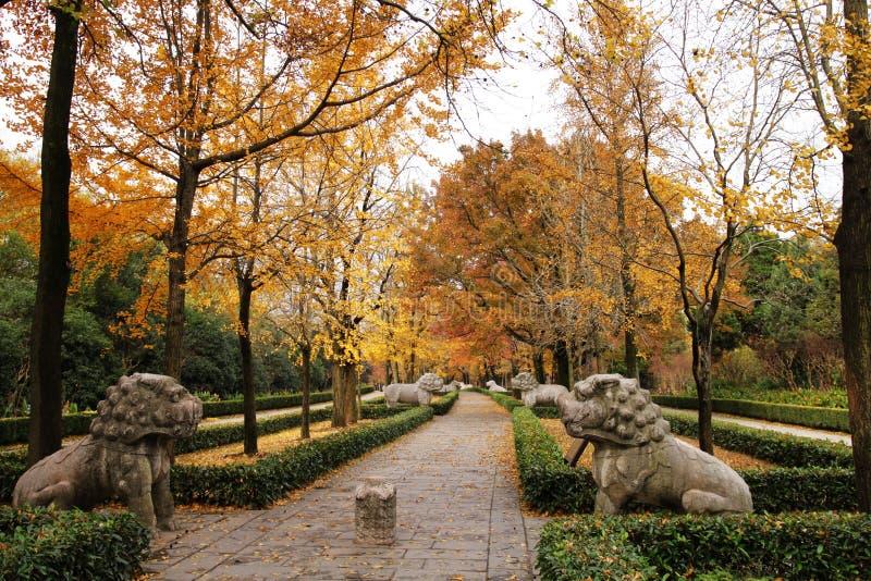 De weg van de herfst in China royalty-vrije stock afbeeldingen
