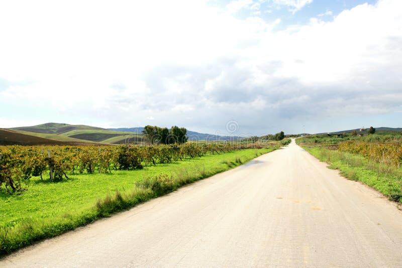 De weg van de herfst in Sicilië royalty-vrije stock foto
