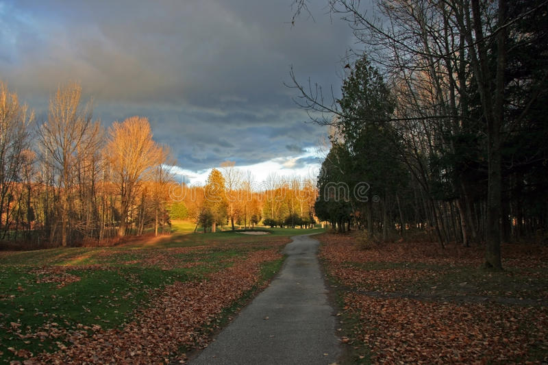 De Weg van de Kar van het golf in de Herfst stock afbeeldingen