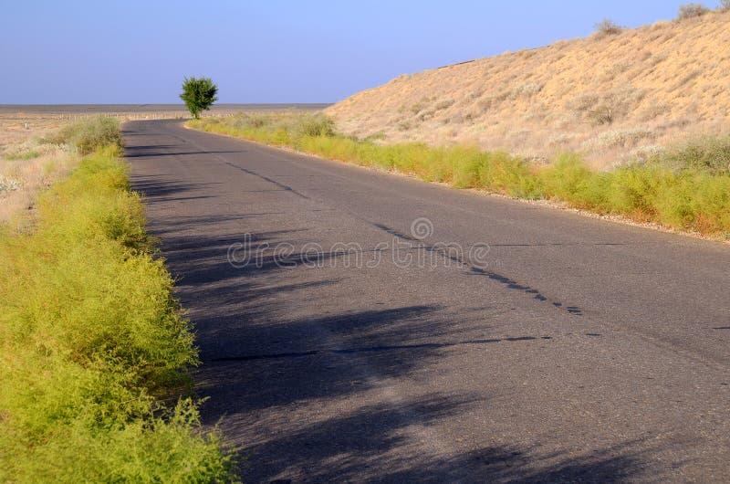 De Weg van de motor over Savanne stock fotografie