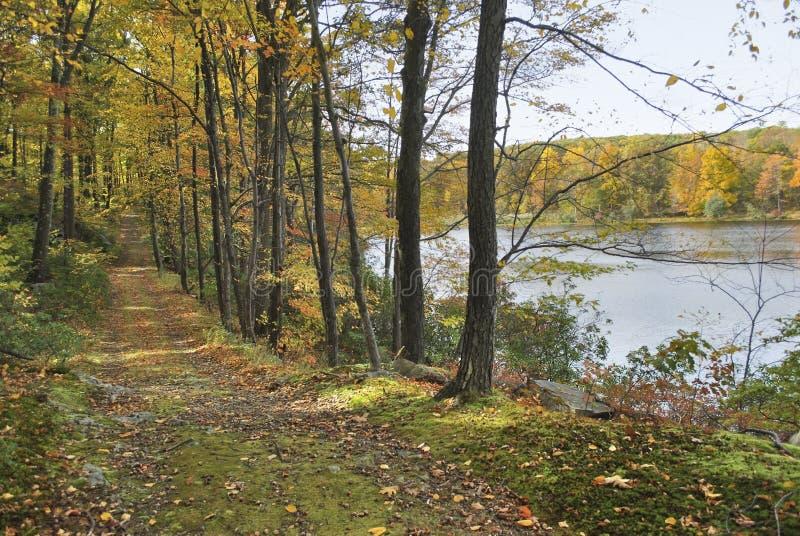 De Weg van de Oever van het meer van de herfst stock fotografie