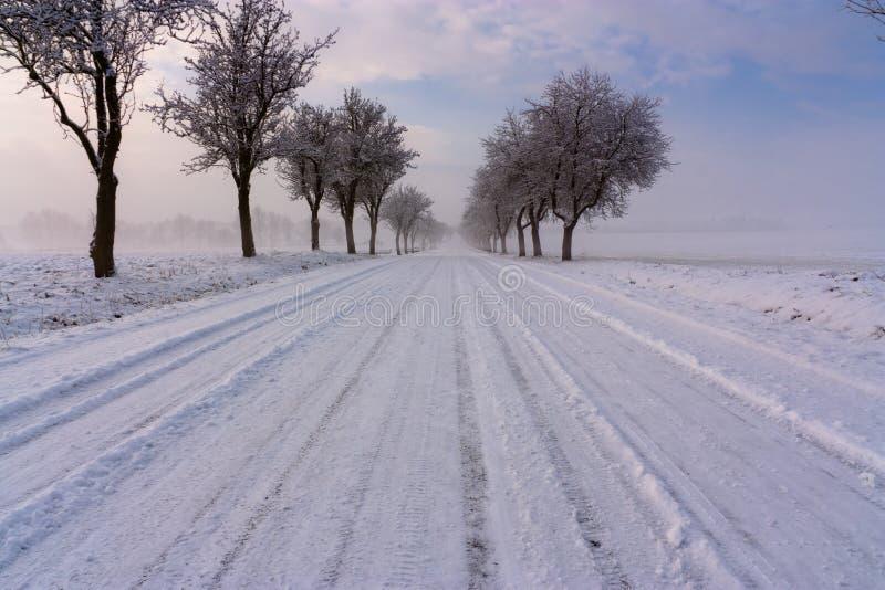 De weg van de sneeuw stock foto