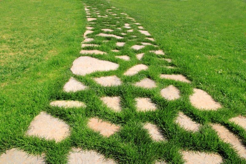 De weg van de steen in de groene textuur van de grastuin royalty-vrije stock foto