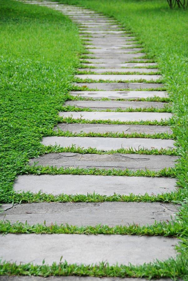 De weg van de steen met groen gras stock afbeeldingen
