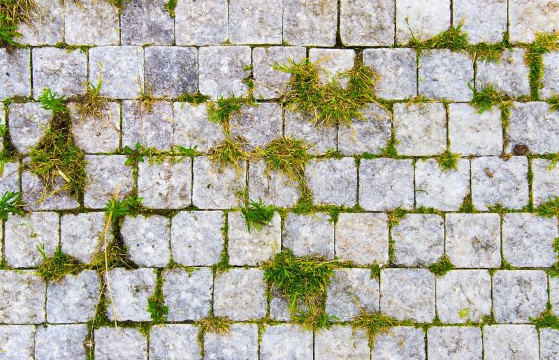 De weg van de steen met groen gras in barsten royalty-vrije stock fotografie