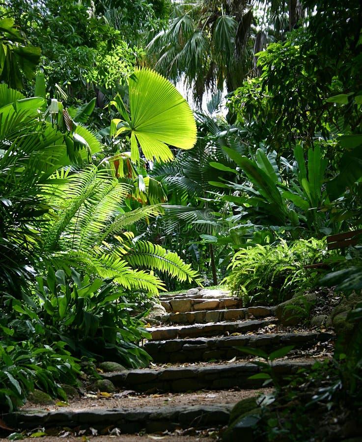 De Weg van de tuin #1 royalty-vrije stock foto's