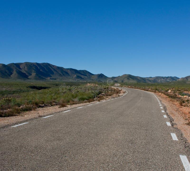 De weg van de woestijn in de vroege lente stock afbeeldingen