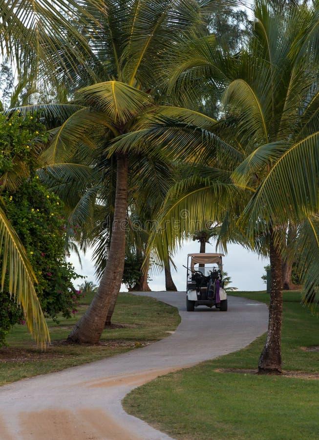 De Weg van de golfcursus met Golfkar stock foto's