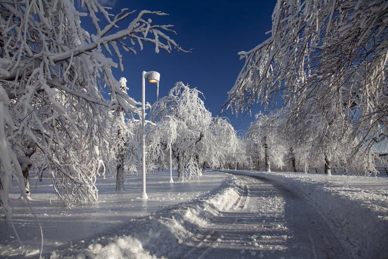 De Weg van het de wintersprookjesland - Niagara-Dalingen stock foto's
