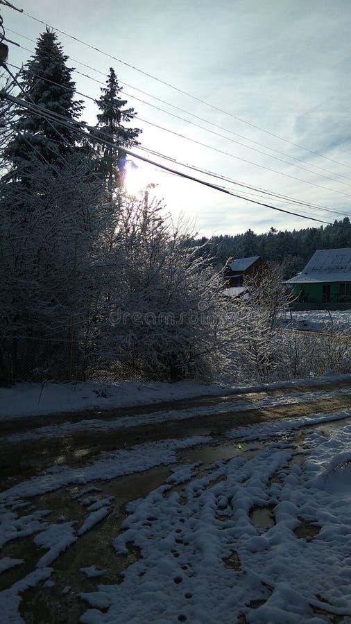 De weg van het de wintersprookje aan het snow-covered bos royalty-vrije stock afbeelding