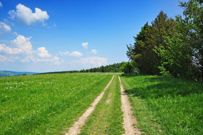 De wegaard van de zomer stock afbeelding