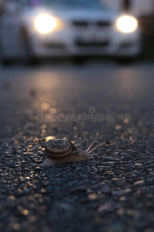 De wegmanier van de slakauto royalty-vrije stock afbeeldingen