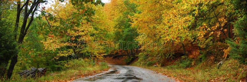 De wegpanorama van de herfst stock afbeelding