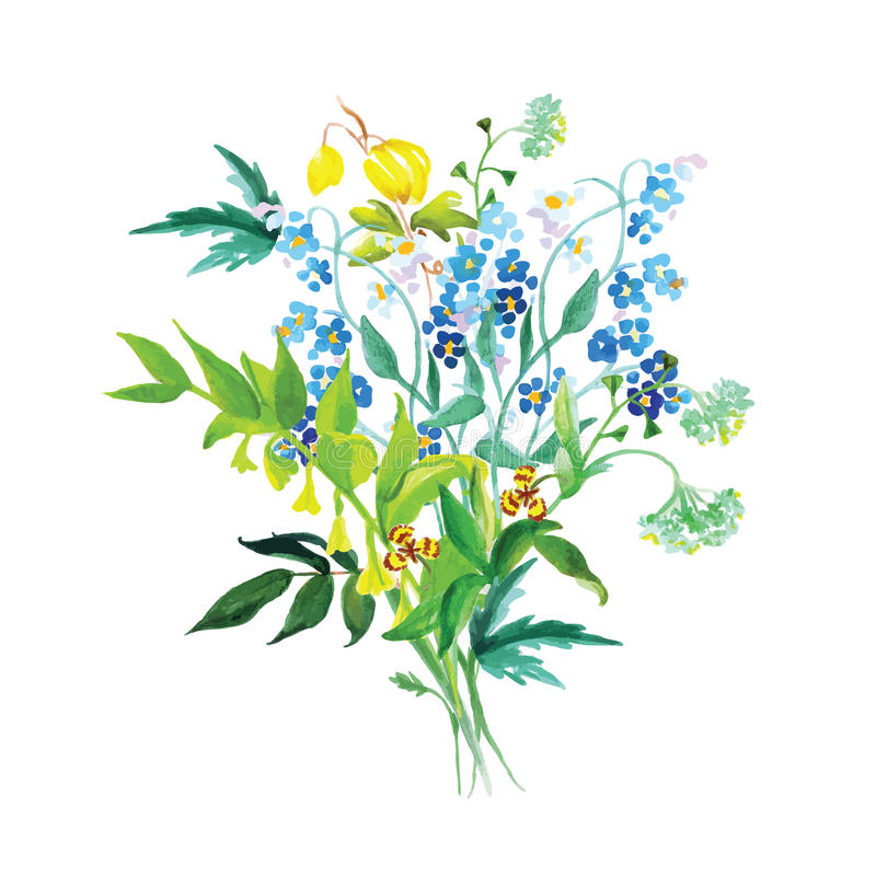 De weide bloeit reeks van het slinger de vectorontwerp vector illustratie