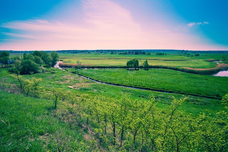 De weide van het alluviale gebied in de lente stock afbeeldingen