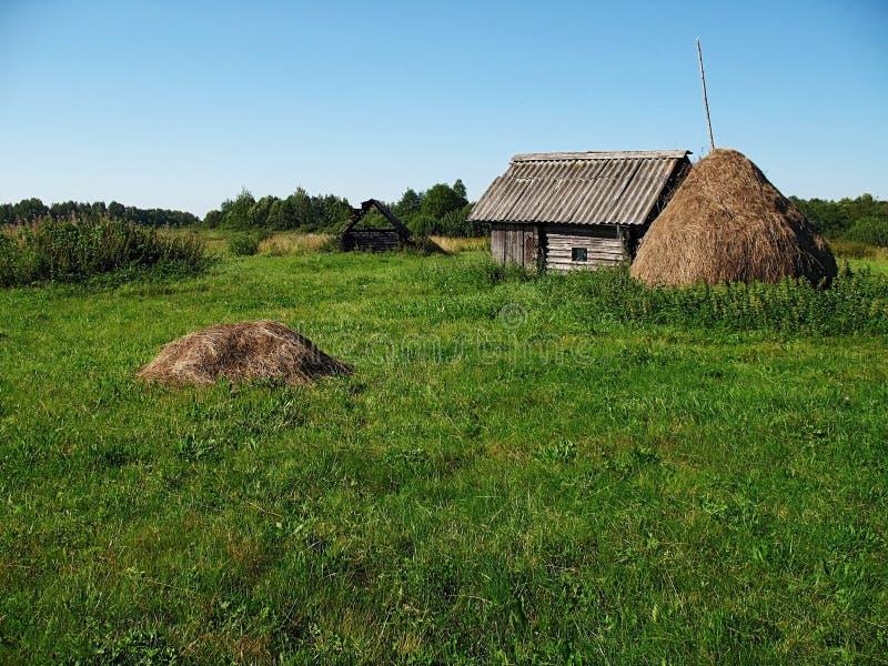 De weide van het dorp stock fotografie