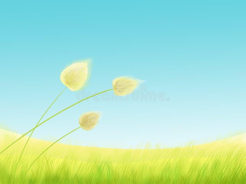 De weide van het gras stock illustratie