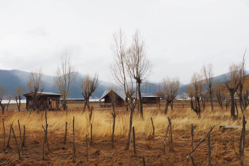 De Weiden van het Napameer is mooi in Shangri-La of Xianggelila, Yunan, China stock fotografie