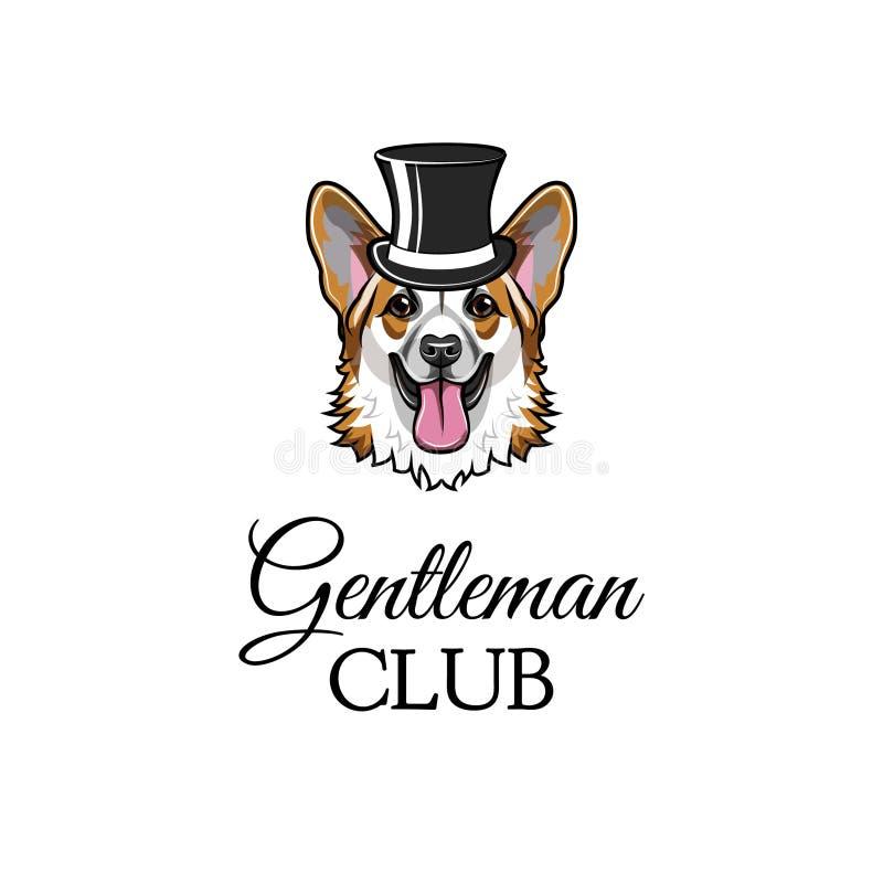 De Welse heer van de corgihond Hoge zijden Herenclub het van letters voorzien Leuk hondportret Vector vector illustratie