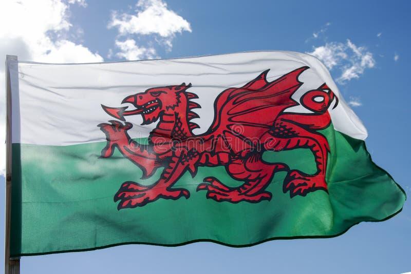 De Welse vlag neemt de rode draak van Cadwaladr, Koning van op Gwynedd, samen met de Tudor-kleuren van groen en wit stock fotografie