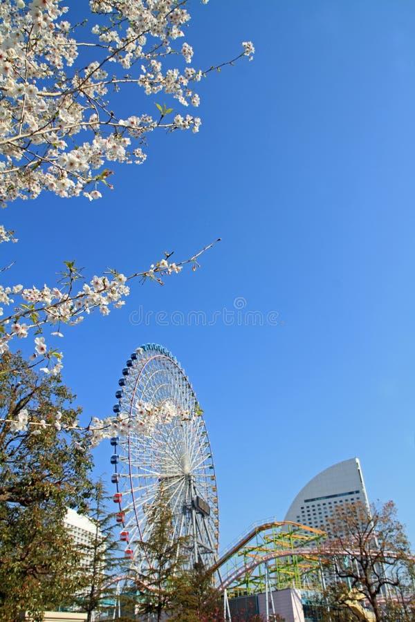 De wereld en de kersenbloesems van Yokohamacosmo in Kanagawa stock afbeeldingen
