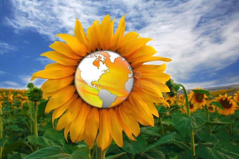 De wereld van de zonnebloem stock illustratie