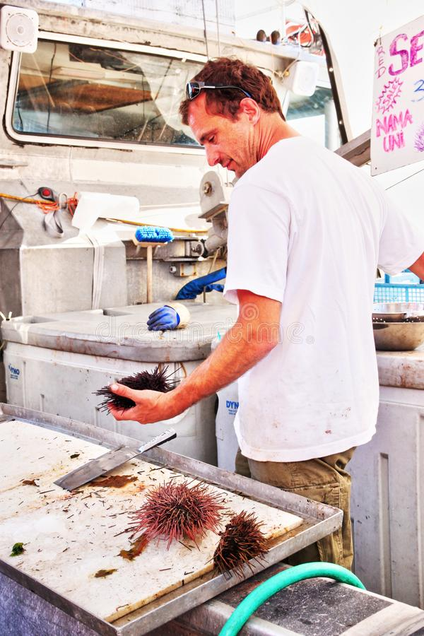 De Werf van de visser bij Steveston-Dorp in Richmond, BC stock fotografie