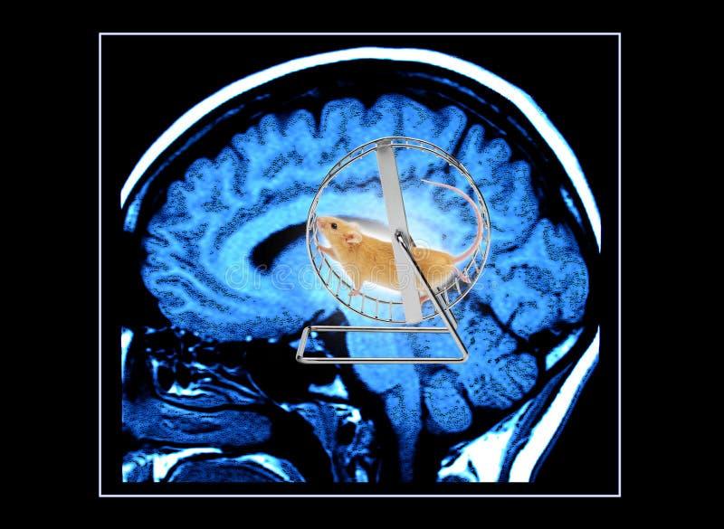 De werkende Hersenen stock foto's