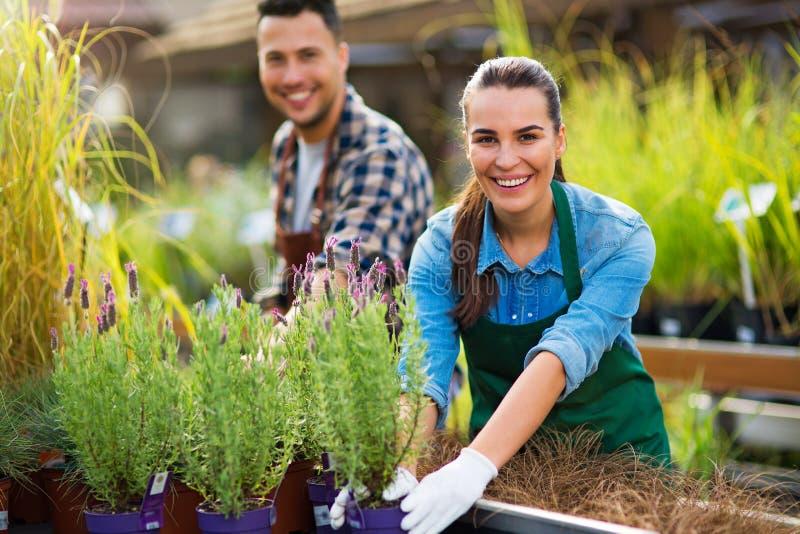 De Werknemers van het tuincentrum stock afbeeldingen