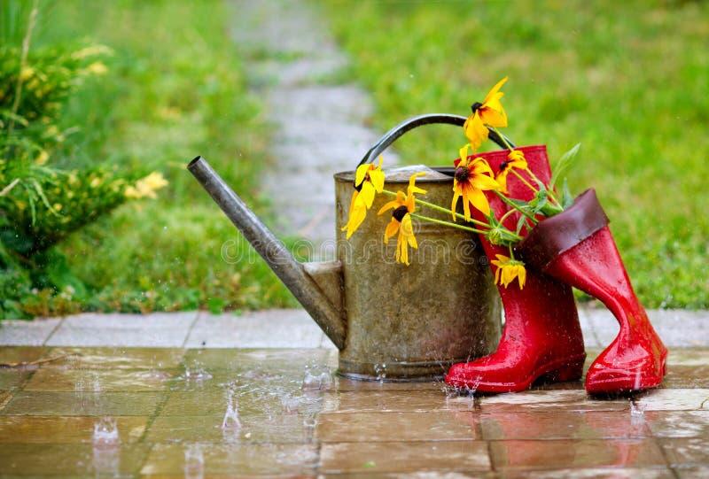 De werktuigen van de tuin onder de regen stock afbeelding