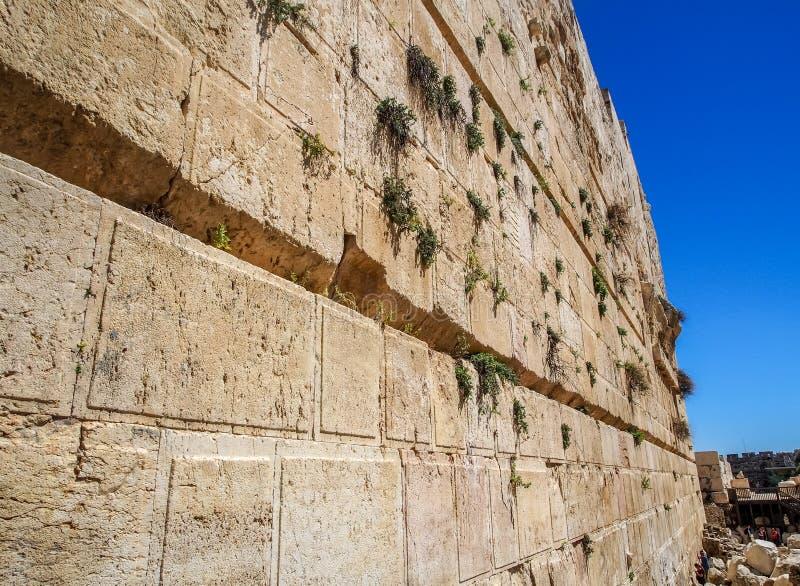 De Westelijke Muur van het tempelclose-up, Jeruzalem, Israël royalty-vrije stock afbeelding