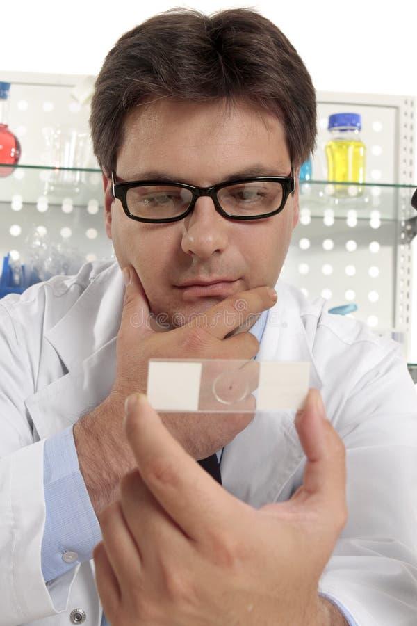 De wetenschapper bestudeert een microscoopdia stock afbeelding