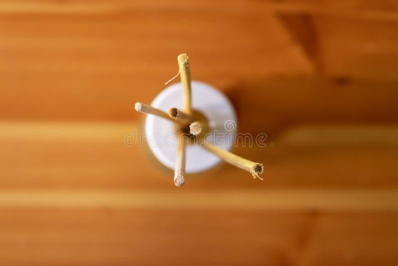 De de wierookstokken van de bamboemug goten met citronellaolie hoogste mening, afstotende wierookstokken stock afbeelding