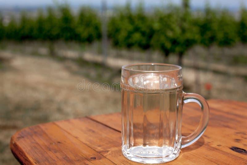 De wijn en de soda spritzer drinken verfrissing Het glas witte wijn op houten lijst aangaande achtergronden van druiven gaat binn royalty-vrije stock afbeeldingen