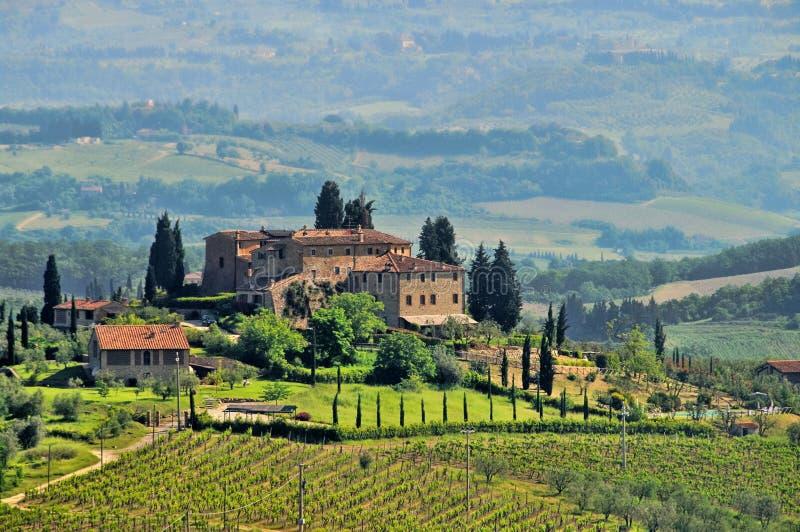 De wijngaard van Toscanië royalty-vrije stock afbeeldingen