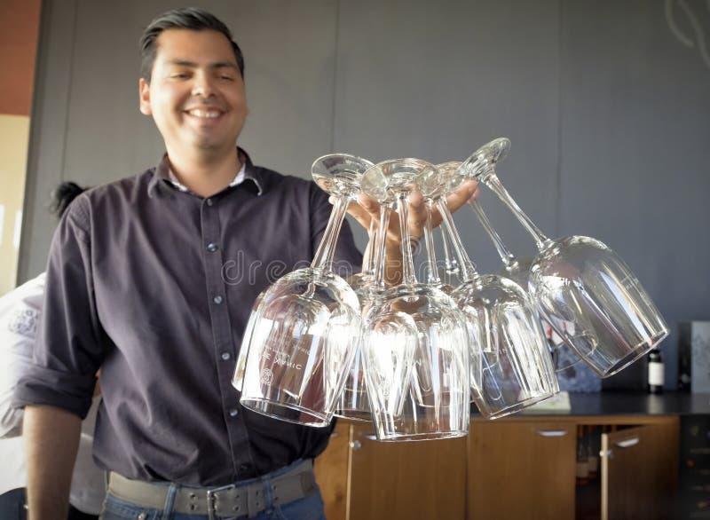 De Wijnglazen van de mensenholding, Baja, Mexico royalty-vrije stock afbeeldingen