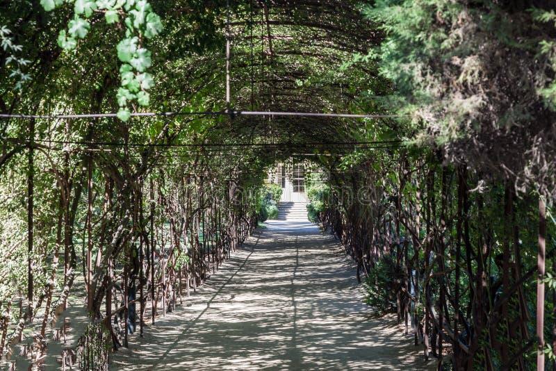 De wijnmakerijtuin Santiago doet Chili royalty-vrije stock foto's