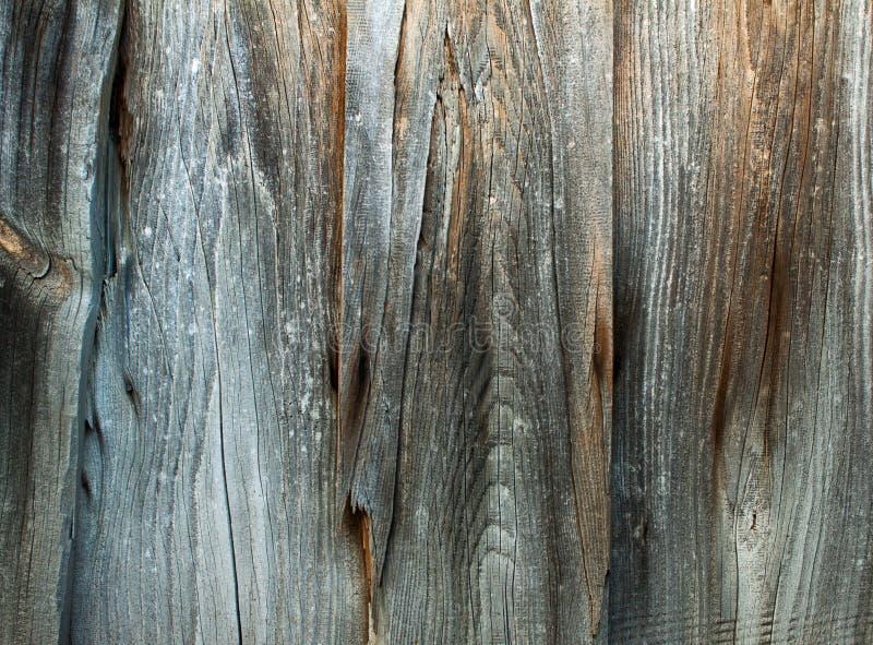 De wijnoogst bevlekte houten muurtextuur als achtergrond stock afbeeldingen