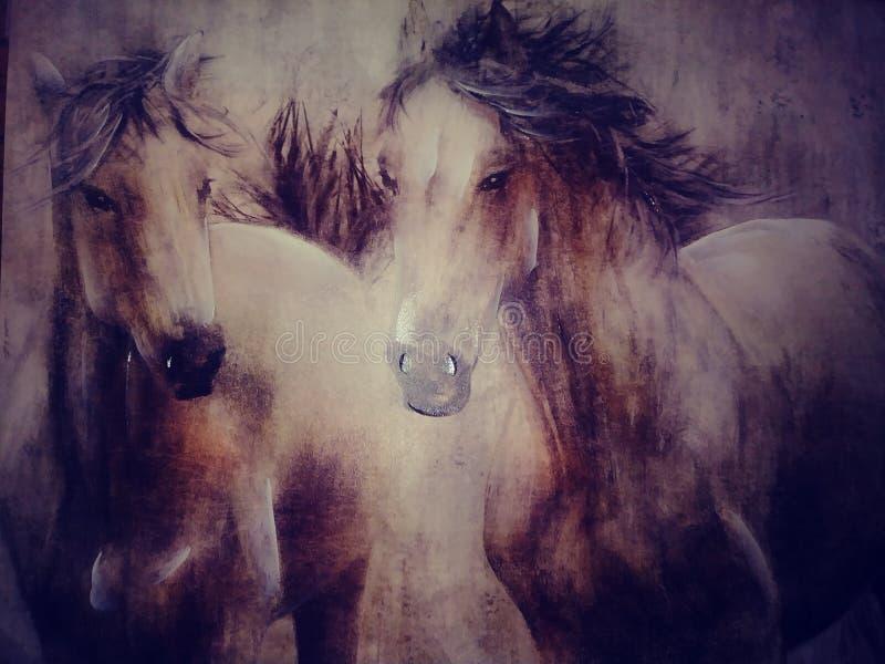 De wild paarden couldn ` t slepen weg me stock foto