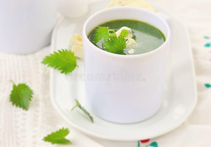 De wilde soep van de netelroom met schimmelkaas. stock foto's