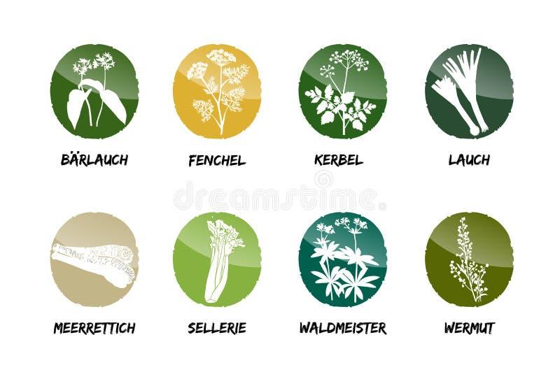 De wilde van de de kervelprei van de knoflookvenkel selderie van de de uimierikswortel royalty-vrije illustratie