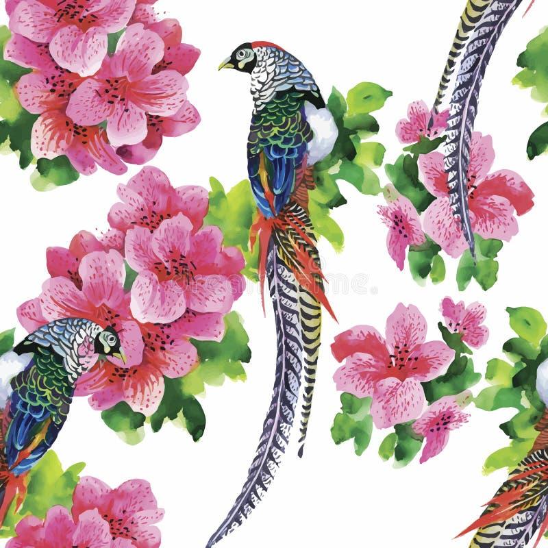 De wilde vogels van Fazantdieren in waterverf bloemen naadloos patroon royalty-vrije illustratie