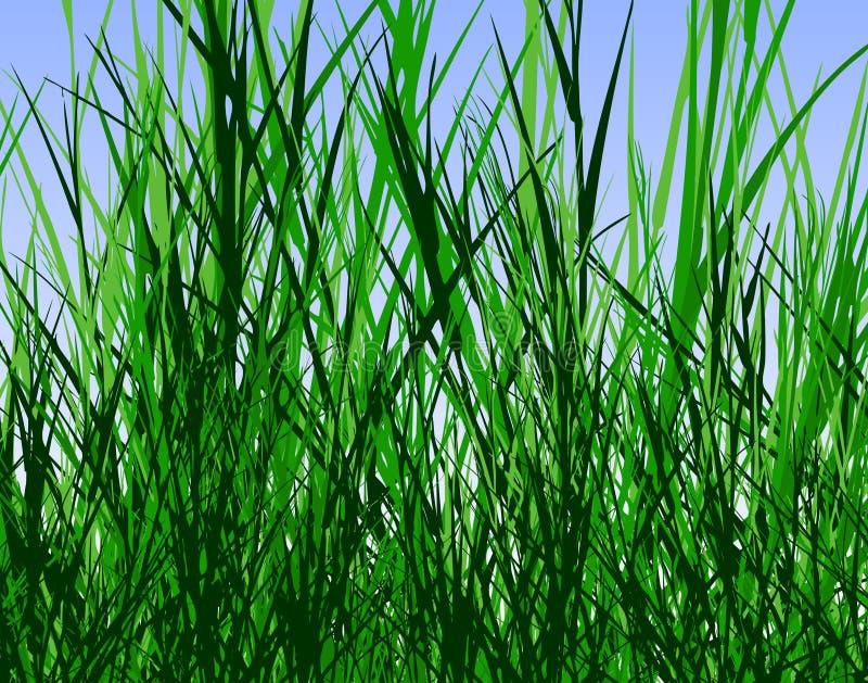De wildernis van het gras royalty-vrije illustratie