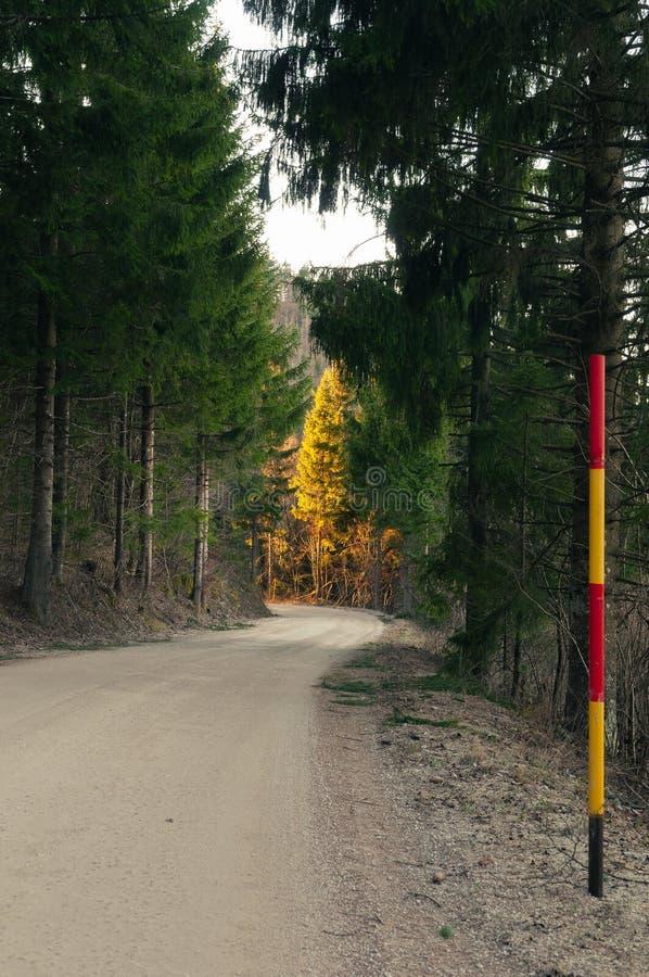 De windende grintweg en staak van de sneeuwploeg in het hout in de herfst royalty-vrije stock fotografie