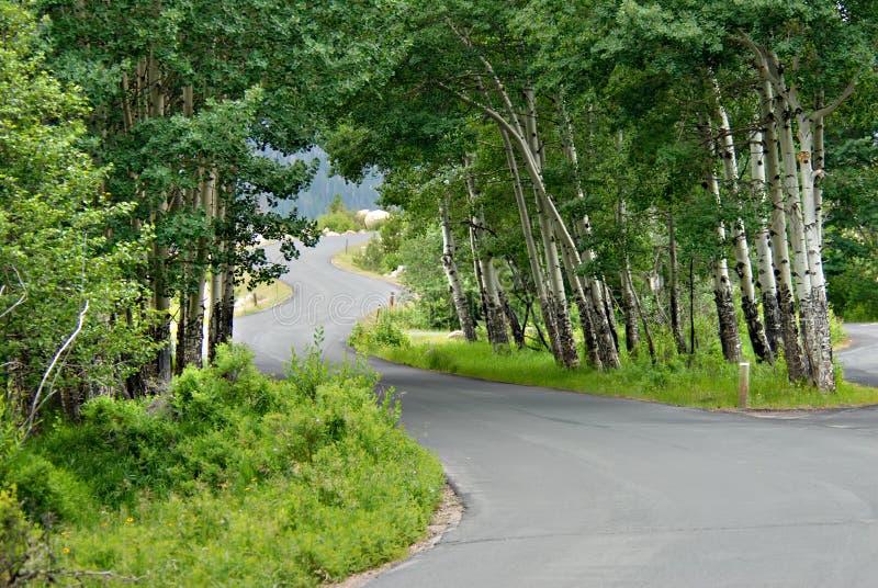 De windende Weg van de Berg royalty-vrije stock afbeelding