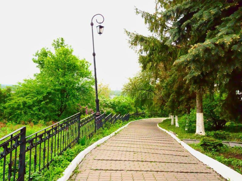 De windende wegen in het stadspark van Kiev-Pechersk Lavra Groene nette, originele lichten en groene struiken in bloem stock foto