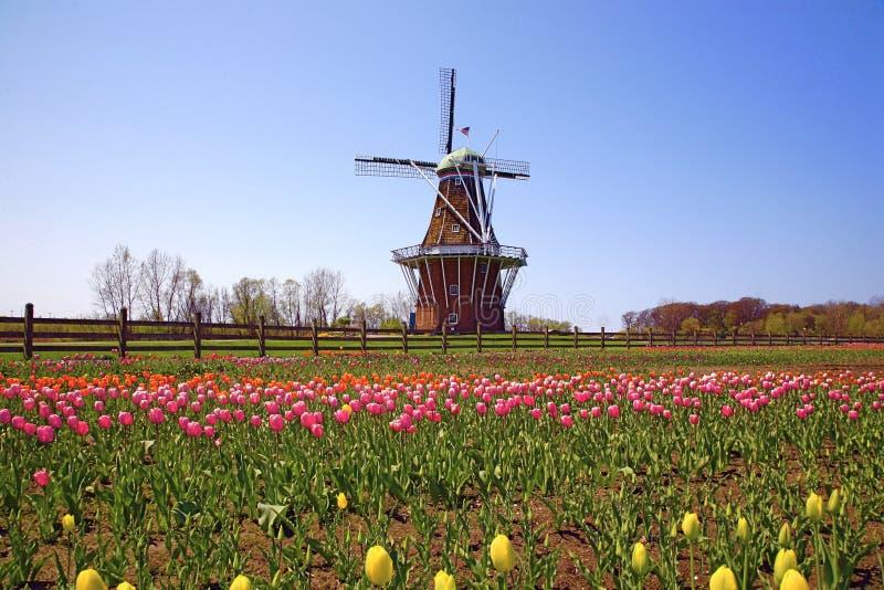 De windmolen stock afbeeldingen